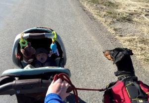 My crew on our walk